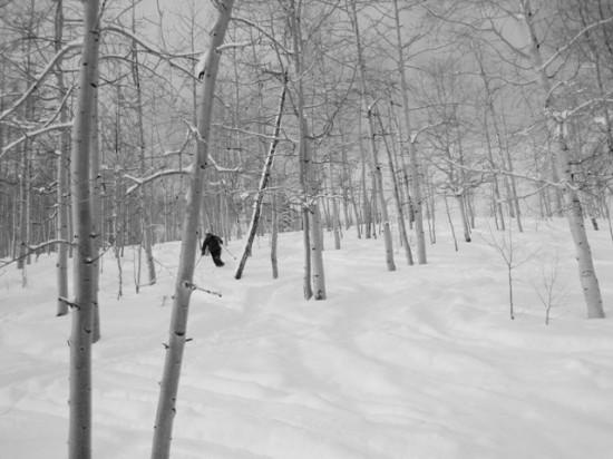 Zimmermann skiing the trees